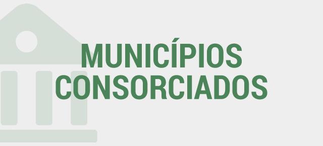 Consórcio Intermunicipal Portal da Mata Sul